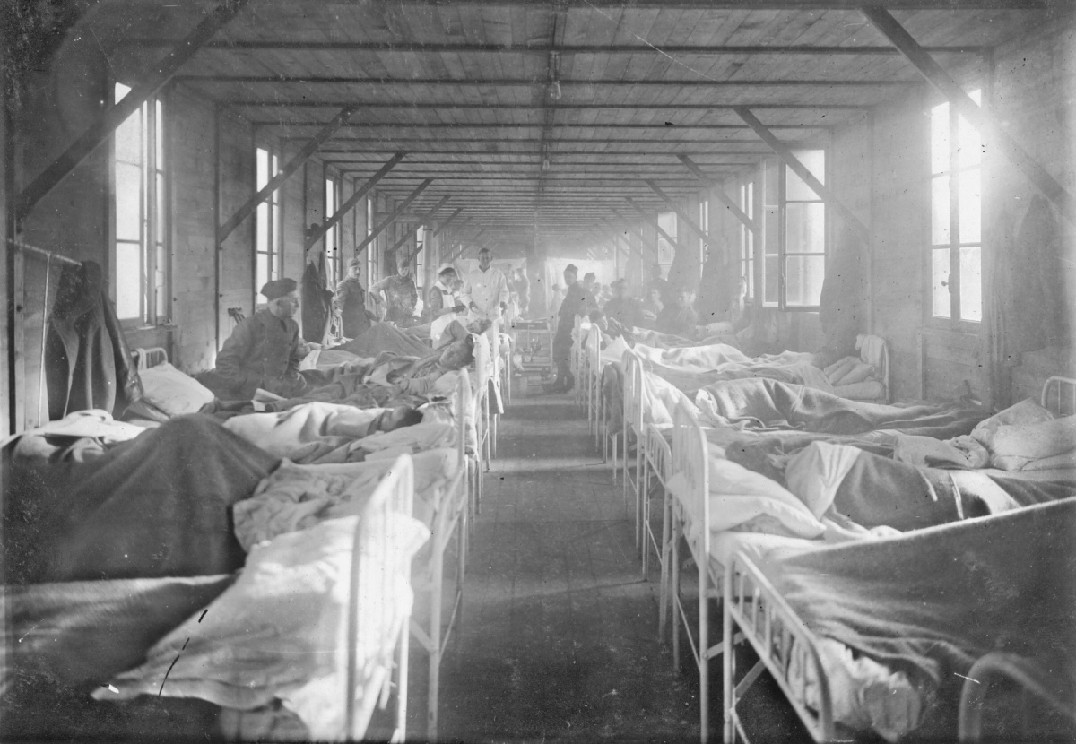 the hospital wards